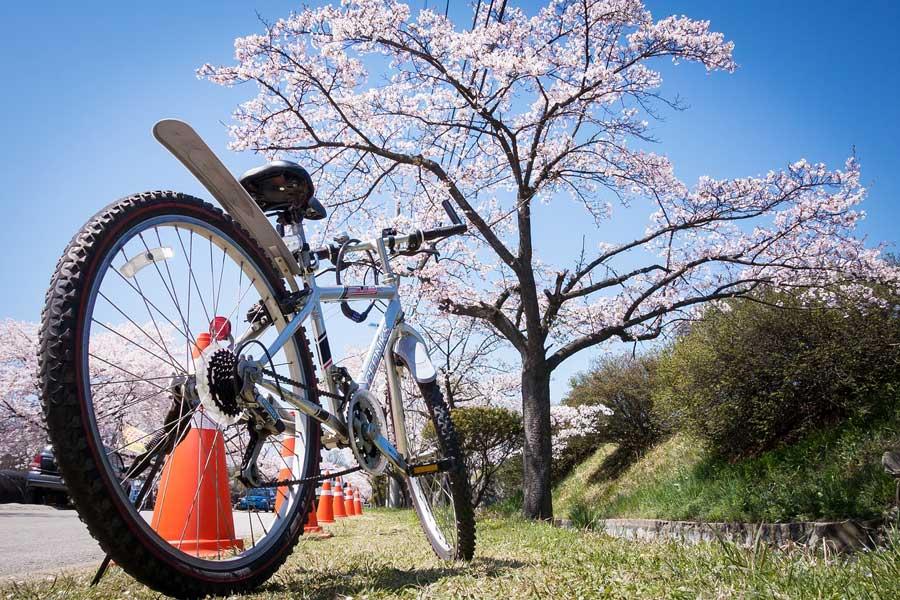 fahrrad leihen kiel